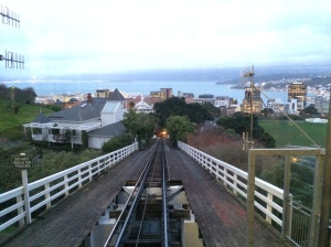 View from the cable car in Wellington