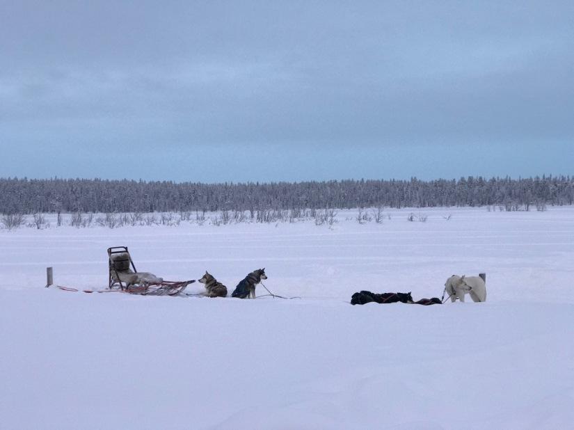 Winter Wonderland, Kiruna,Sweden.